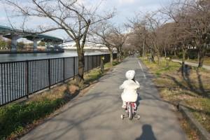 櫻宮 - 帰り道
