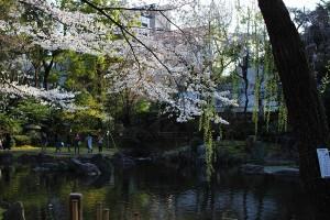 靖国神社 - 神池庭園