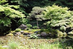 南禅寺 - 南禅院庭園