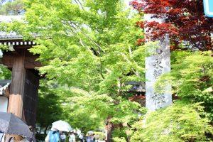 禅林寺 - 総門