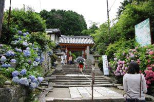 矢田寺 - 山門