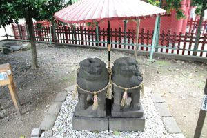 浅草神社 - 夫婦狛犬